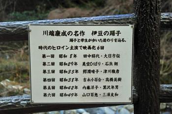 Kawazu_4530