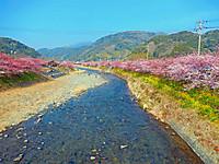 Kawazu_0860_2