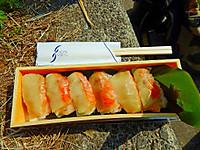 Kawazu_1410
