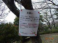 Dscn4812_2