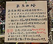 Dscn80951_10