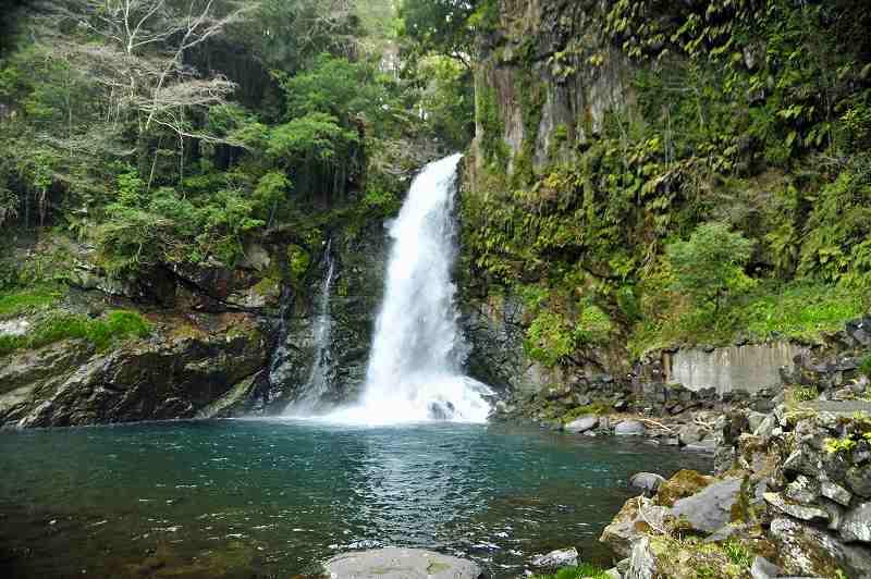 河津大滝の撮影: ケンさんの探鳥記