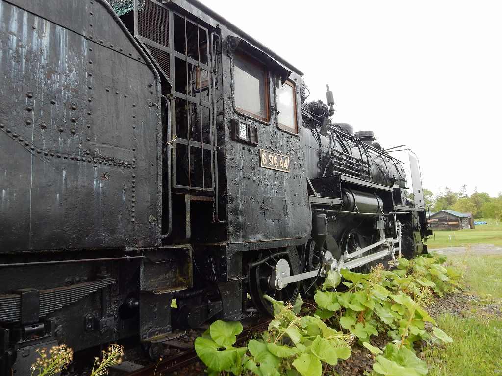 Dscn6204